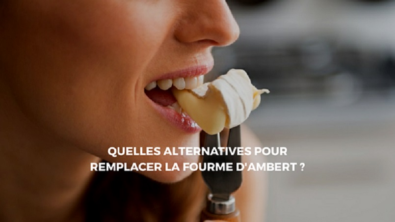 alternative fourme Ambert